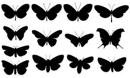 Illustration of different butterflies Royalty Free Stock Photo