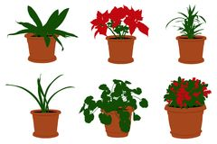 Illustration of different flowers in pots Stock Photos