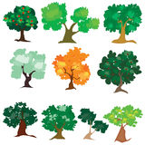 Illustration of different kind of tree Stock Photos