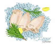 Illustration of a dish of cuttlefish with lemon and rosemary on ice cubes. Cuttlefish cooked. Icon, logo, symbol. Illustration of a dish of cuttlefish with lemon Stock Images