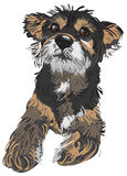 Illustration of a dog Royalty Free Stock Photo