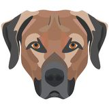 Illustration Dog Labrador. For the creative use in graphic design Royalty Free Stock Photo