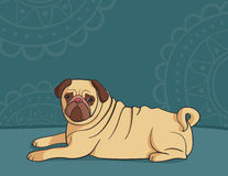Illustration of dog mops Stock Photography
