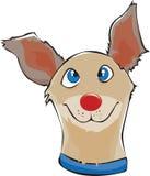 Dog's face Stock Image