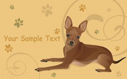 Illustration a dog and traces from paws Royalty Free Stock Photo