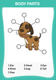 Illustration of dog vocabulary part of body Royalty Free Stock Images
