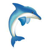 Illustration of the dolphin Stock Photo