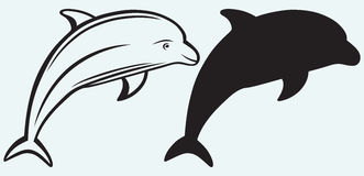 Illustration dolphin Stock Images