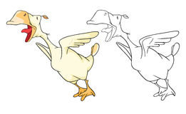 Illustration of Domestic Geese Cartoon Character Royalty Free Stock Photo