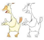 Illustration of Domestic Geese Cartoon Character Stock Photography