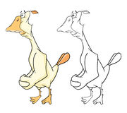Illustration of Domestic Geese Cartoon Character Royalty Free Stock Images