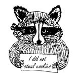 Illustration drôle de croquis de voleur de raton laveur de photo de bande dessinée Photo libre de droits