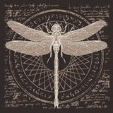 Drawing of dragonfly on an abstract background Royalty Free Stock Photo