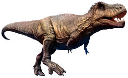 Illustration du dinosaure 3D de tyrannosaure illustration stock