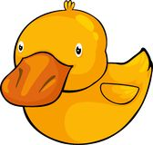 Illustration duck Royalty Free Stock Image
