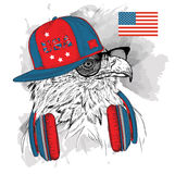 Illustration of eagle in the glasses, headphones  Royalty Free Stock Photo