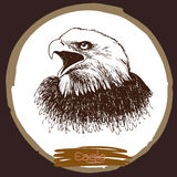 Illustration of eagle, hawk bird Stock Photography