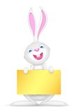 Easter bunny holding Blank Board Stock Photography