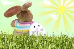 Easter bunny and bunny egg Stock Photos