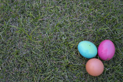 Illustration Easter eggs on grass Stock Images
