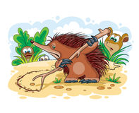 Illustration of an echidna Royalty Free Stock Images