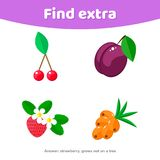Education game for preschool kids. Find extra object. berries. Illustration. Education game for preschool kids. Find extra object. berries stock illustration