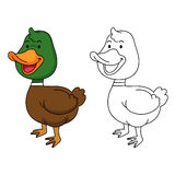 Illustration of educational coloring book-duck Royalty Free Stock Images