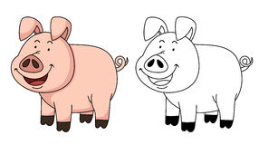 Illustration of educational coloring book-pig Stock Photo