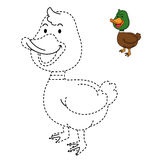 Illustration of educational game for kids and coloring book-duck Stock Photo