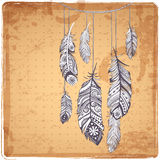 Illustration of Ehnic feathers Royalty Free Stock Photo