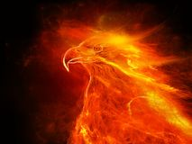 Illustration eines brennenden Adlers mit schwarzem Hintergrund Lizenzfreie Stockfotos