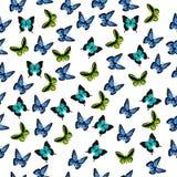 Illustration eines bunten Schmetterlinges Lizenzfreie Stockfotografie
