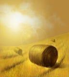 Illustration eines Landschaftsfeldes im Hintergrund und des Heus im Vordergrund Stockfotos