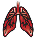 Lungen Lizenzfreie Stockfotografie