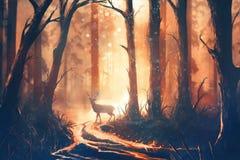 Illustration eines Rotwilds im warmen Wald lizenzfreie stockfotografie