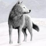 Illustration eines weißen wilden Wolfs mit blauen Augen und Winterhintergrund Lizenzfreies Stockbild