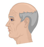 Illustration of an elderly man Royalty Free Stock Photos