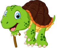 Illustration of elderly tortoise Stock Photos