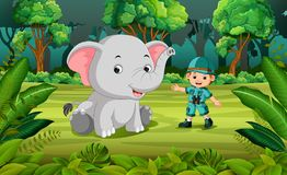 Elephant and adventurer in the jungle. Illustration of Elephant and adventurer in the jungle Stock Photo