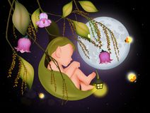 Illustration of elf on leaf. And fireflies in the moonlight Stock Image