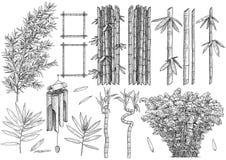 Illustration en bambou de colelction, dessin, gravure, encre, schéma, vecteur illustration libre de droits