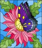 Illustration en verre souillé avec une fleur rose d'aster et un papillon lumineux Photographie stock libre de droits