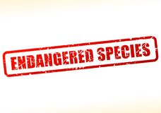 Endangered species text buffered. Illustration of endangered species text buffered on white background Royalty Free Stock Images