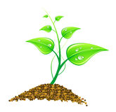 Illustration environmental concept - green leaves Royalty Free Stock Photos