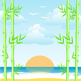 Sea and bamboo grove Royalty Free Stock Image