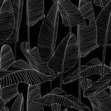 Illustration EPS10 för bakgrund för modell för härlig palmträdbladkontur sömlös stock illustrationer