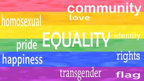 Illustration of Equality word lettering isolated on lgbt flag colors background stock footage