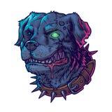 illustration of evil mad dog Stock Image