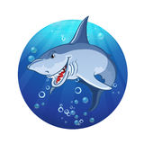 Illustration of an evil shark Royalty Free Stock Photography