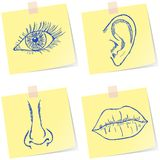 Senses sketches Royalty Free Stock Photography